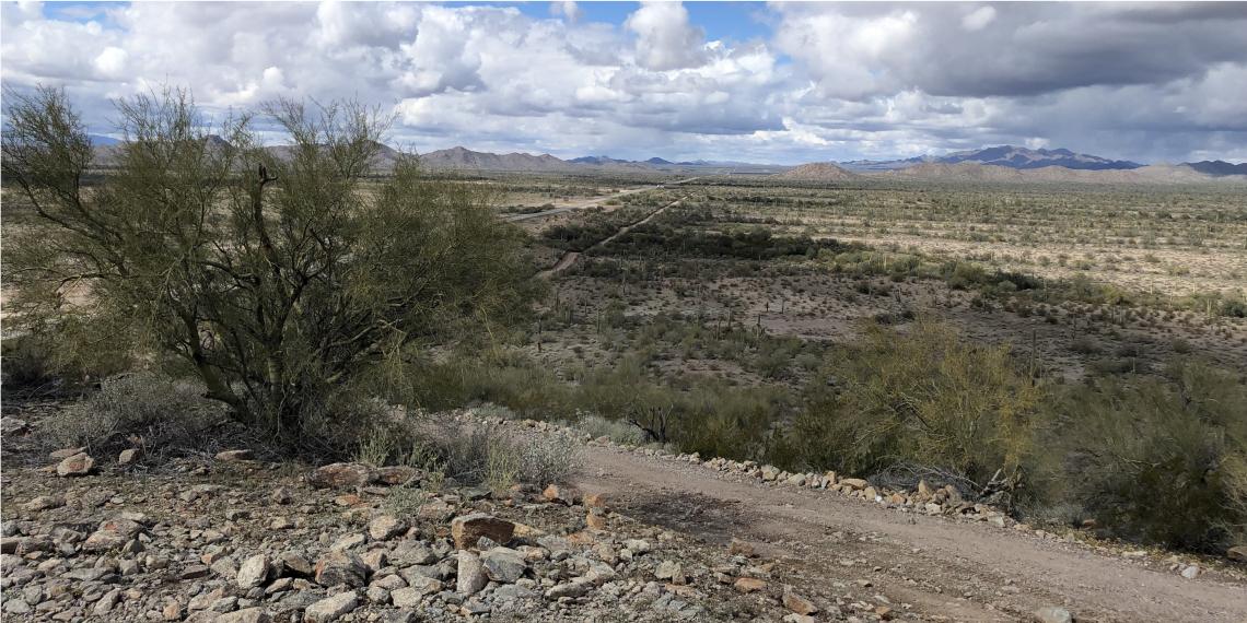 Desierto de Arizona, ruta de los migrantes hacia los EE.UU. Foto: EFE.