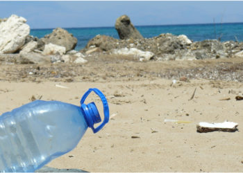 Contaminación del océano.. Foto:  Kakuko en Pixabay.