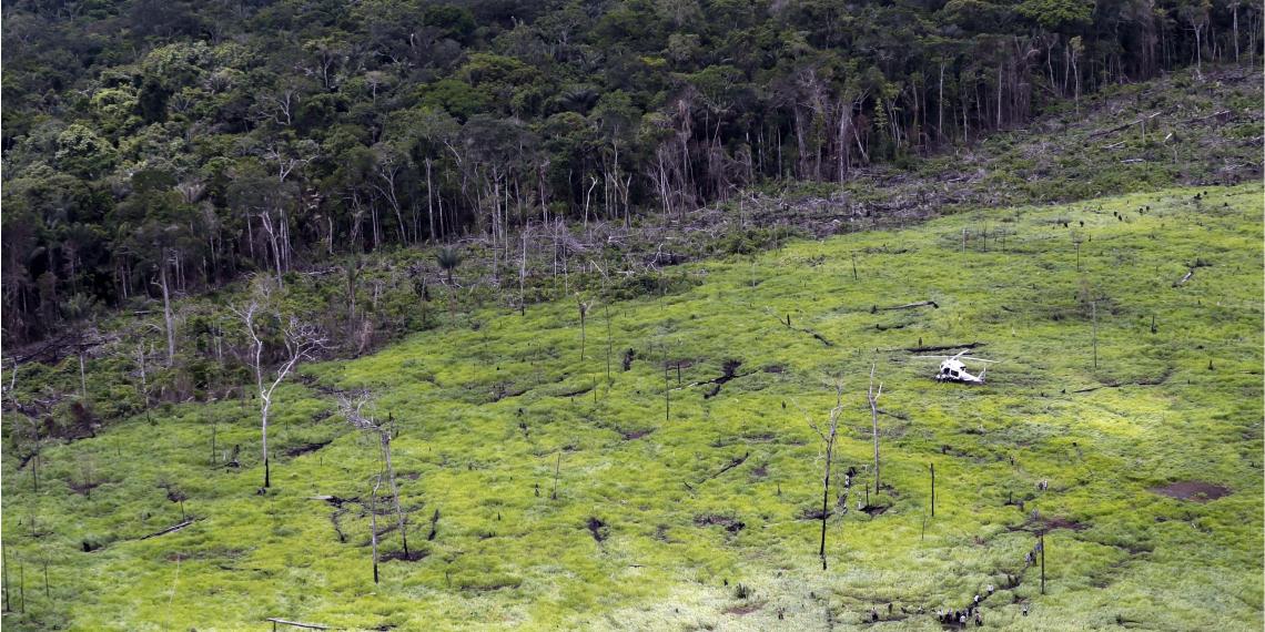 Deforestación en Colombia: Foto: EFE.