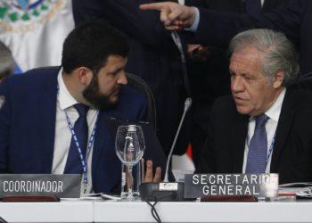 El coordinador de un grupo de trabajo de la Secretaría General de la OEA sobre Venezuela, David Smolansky (i), habla con el secretario general de la OEA, Luis Almagro (d), durante el lanzamiento del informe sobre la crisis de migrantes y refugiados venezolanos. Crédito: EFE/ Luis Eduardo Noriega