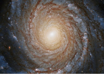 Descubren un misterioso disco que gira alrededor de un agujero negro