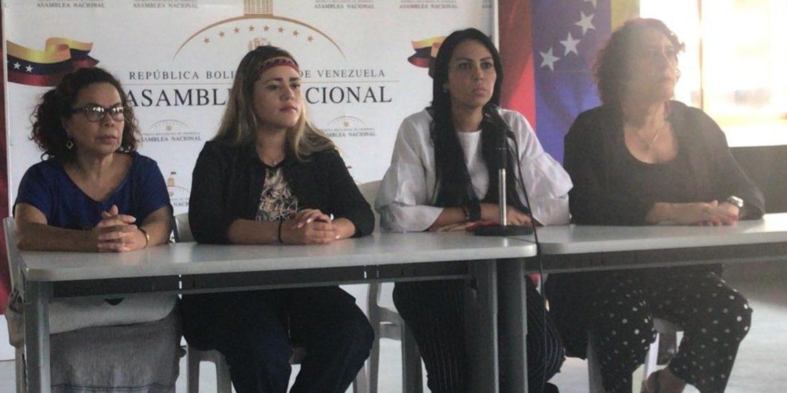 Delsa Solórzano: esperamos la visita de la CIDH en los próximos días
