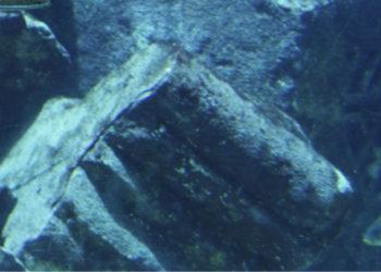 Descubren que un submarino nuclear está emitiendo radiación en el fondo del océano