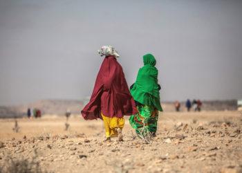 El cambio climático a generado sequías en varias partes del mundo. Foto: EFE