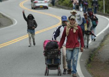 Seis millones de personas habrán migrado de Venezuela para finales de 2019
