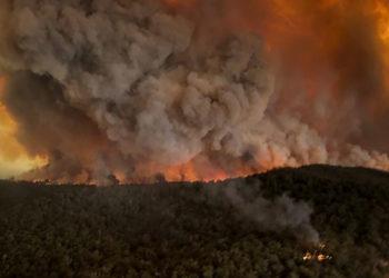 Los fuertes incendios en Australia han consumido millones de hectáreas. Foto. AP
