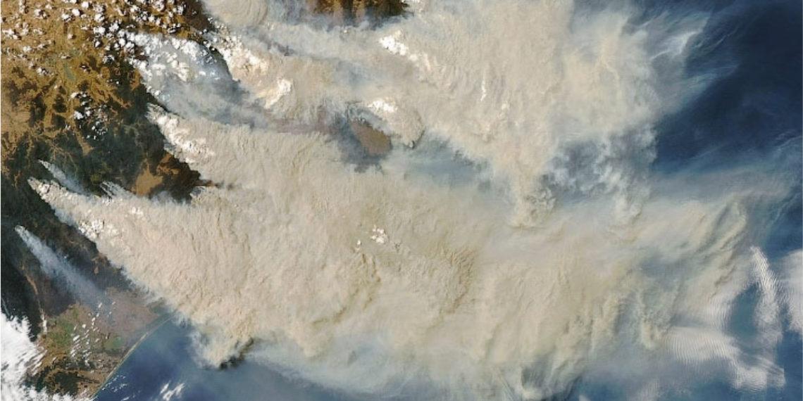 Imagen satelital de los incendios en Australia. Foto: NASA
