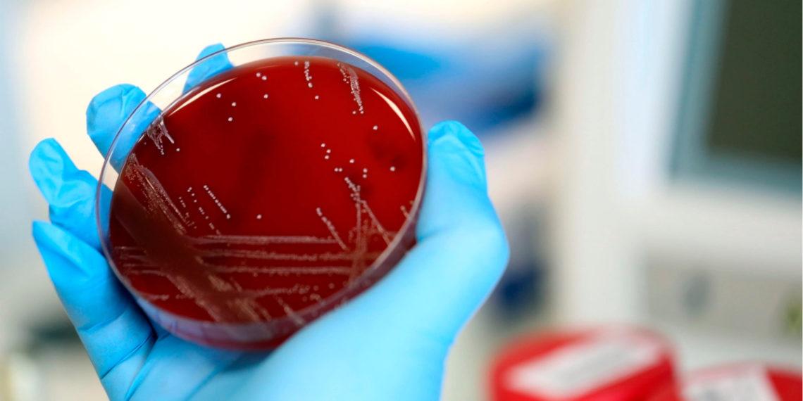 ¿Qué es el coronavirus y cómo se contagia? Foto: EFE