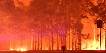 Desde el mes de septiembre, fuertes incendios afectan a Australia. Foto: AFP