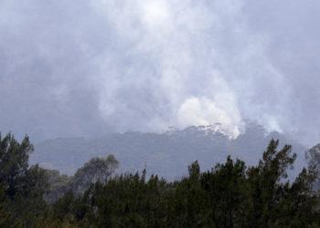 Incendios en Australia. Foto: AP