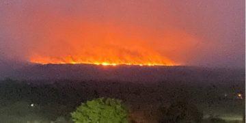 Incendios en Caño Cristales. Foto: Defensoría del Pueblo @DefensoriaCol