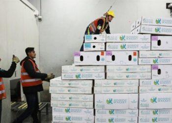 Exportan Flores colombianas para San Valentín. EFE