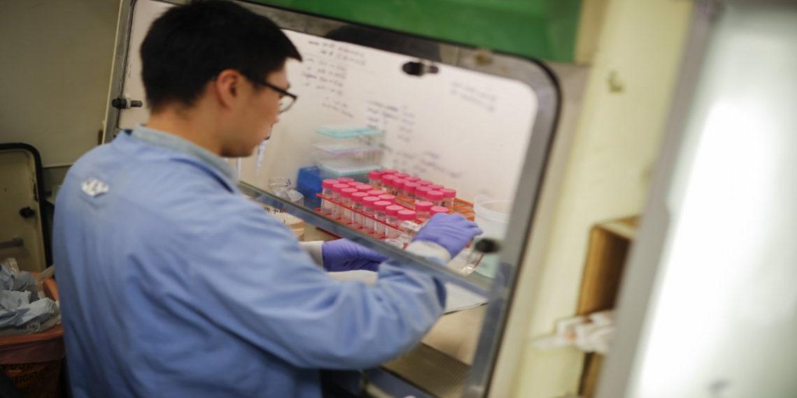 medicamentos, vacunas para coronavirus. América Digital/AP