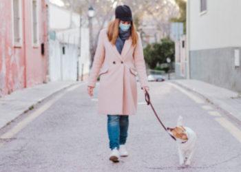 cuidar a las mascotas