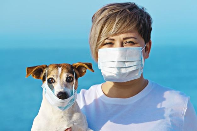 Qué hacer con mi perro si tengo coronavirus