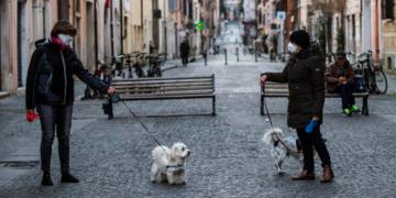 adnoticias-Veterinarios-advierten-que-no-se-debe-usar-detergente-o-hidrogel-para-desinfectar-perros-o-gatos-2020-EFE