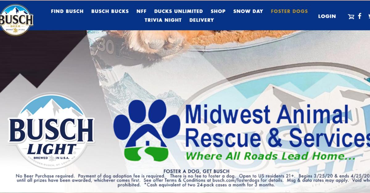 rescatar mascotas