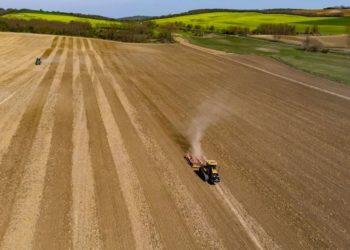 Sector agrario Florida
