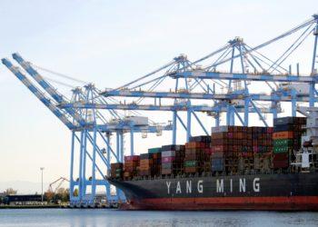 OMC prevé desplome