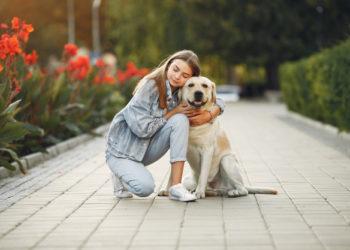 coronavirus y mascotas, formas para su cuidado y protección