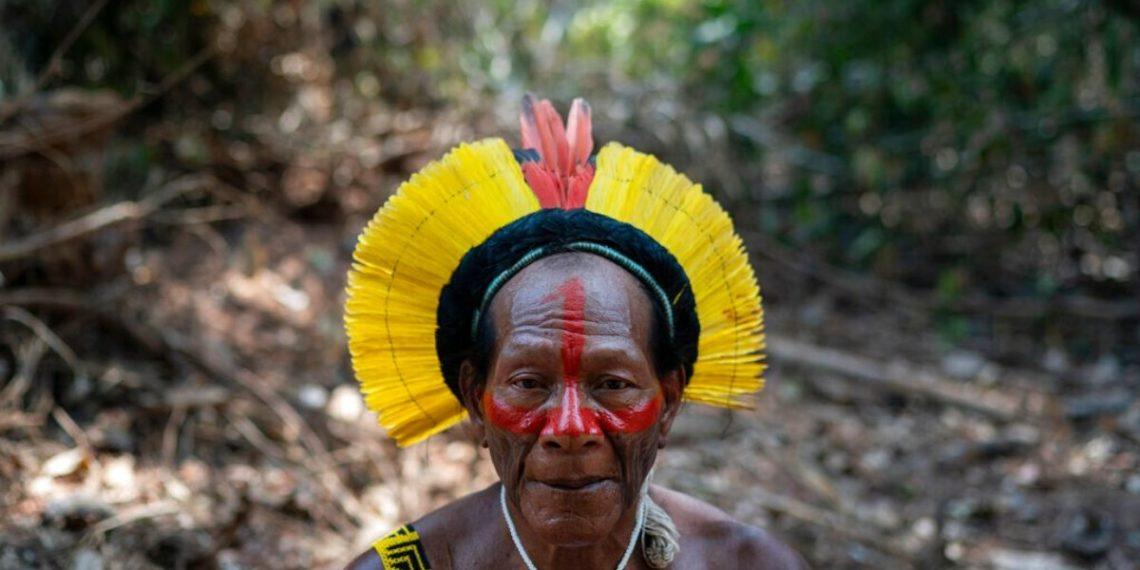 Amazonas coronavirus