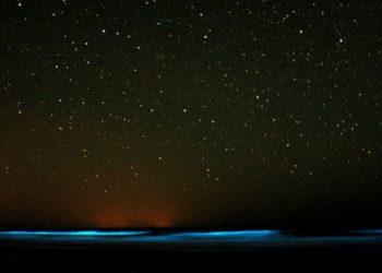 Bioluminiscencia Australia