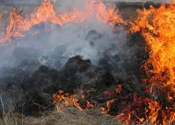 Florida incendios