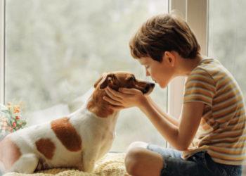 Un niño se interpone para evitar que su madre castigue a su mascota