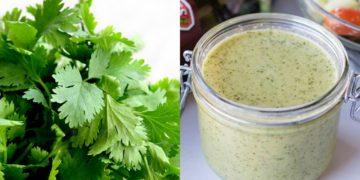 Aderezo o salsa de cilantro