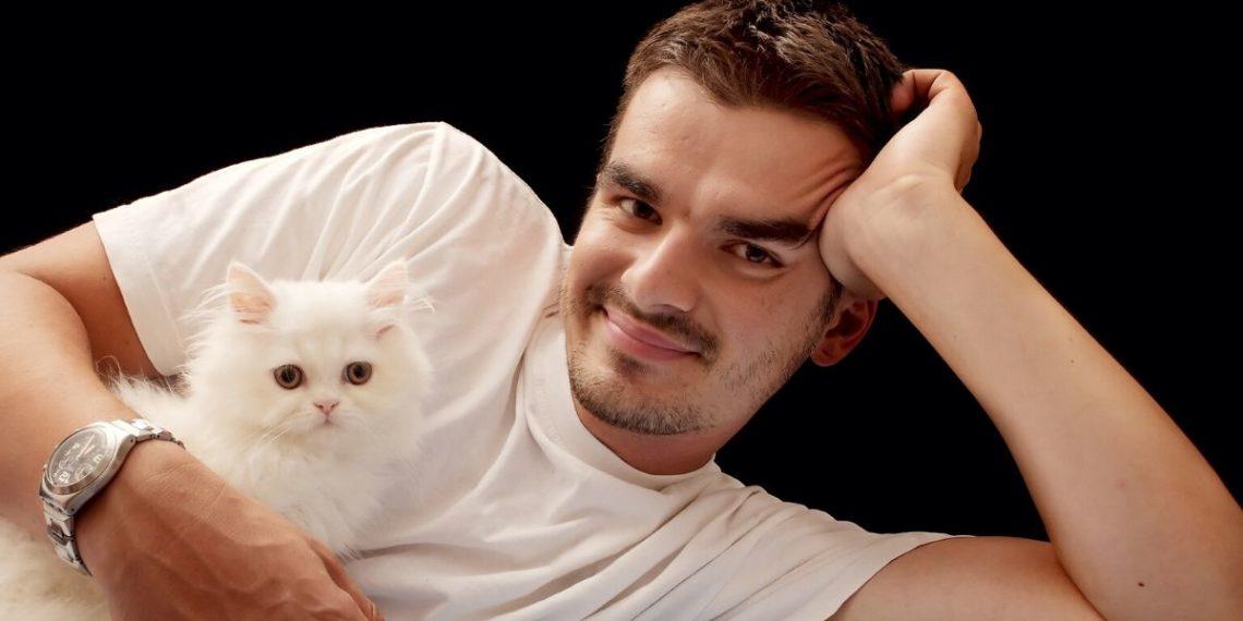 Hombres gatos
