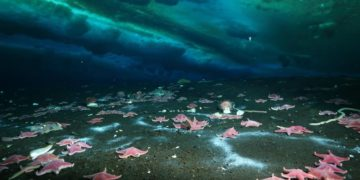Metano en la Antártida