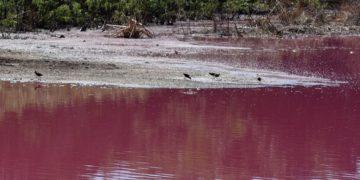 lago contaminado por curtiembre