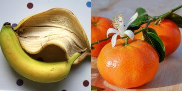 Cáscara de plátano y mandarina
