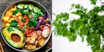 Recetas de hierbas frescas para usar en comidas