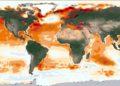 las corrientes oceánicas de los trópicos están cambiando por el cambio climático