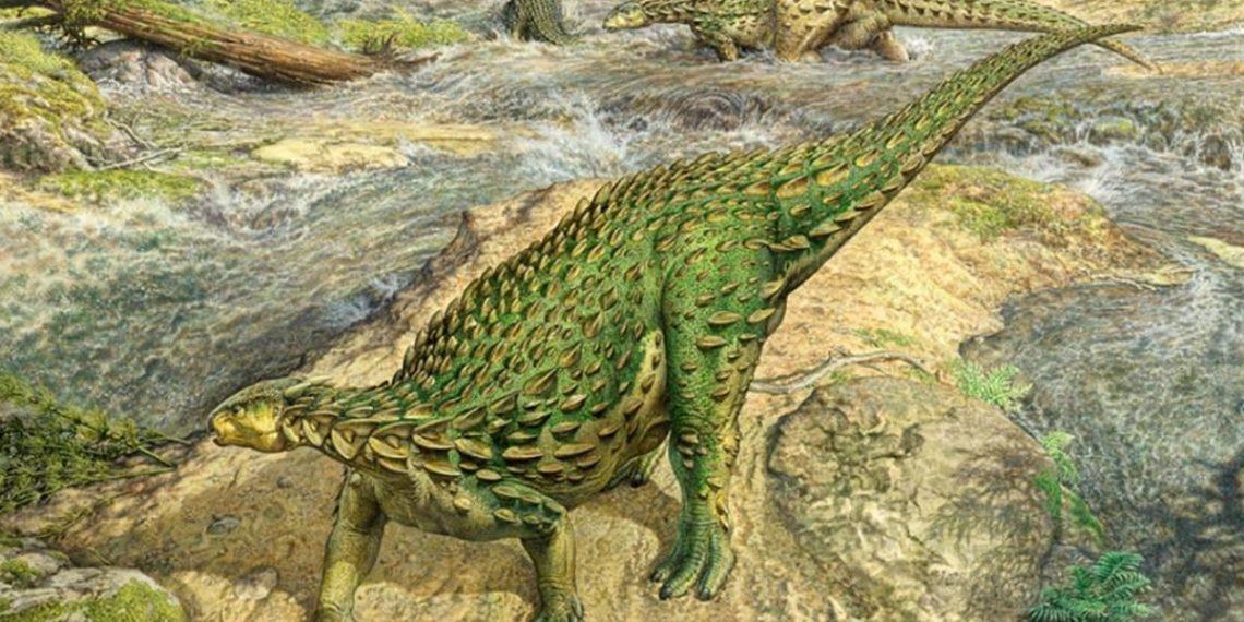 Esqueleto dinosaurio
