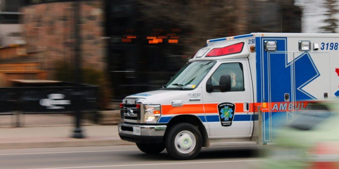 perro se sube a ambulancia