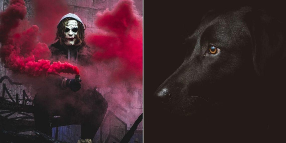 Reto viral del payaso y el perro