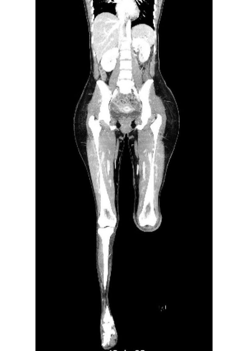 Radiografía Daniella Álvarez