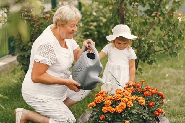 regar flores