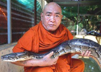 Refugio de serpientes en Birmania