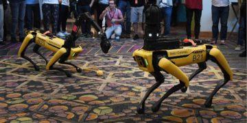 El impactante baile de robots humanoides que sorprende al mundo