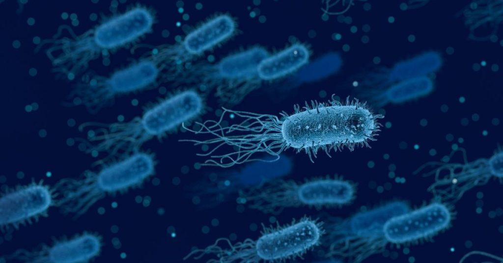 enfermedad de supergonorrea