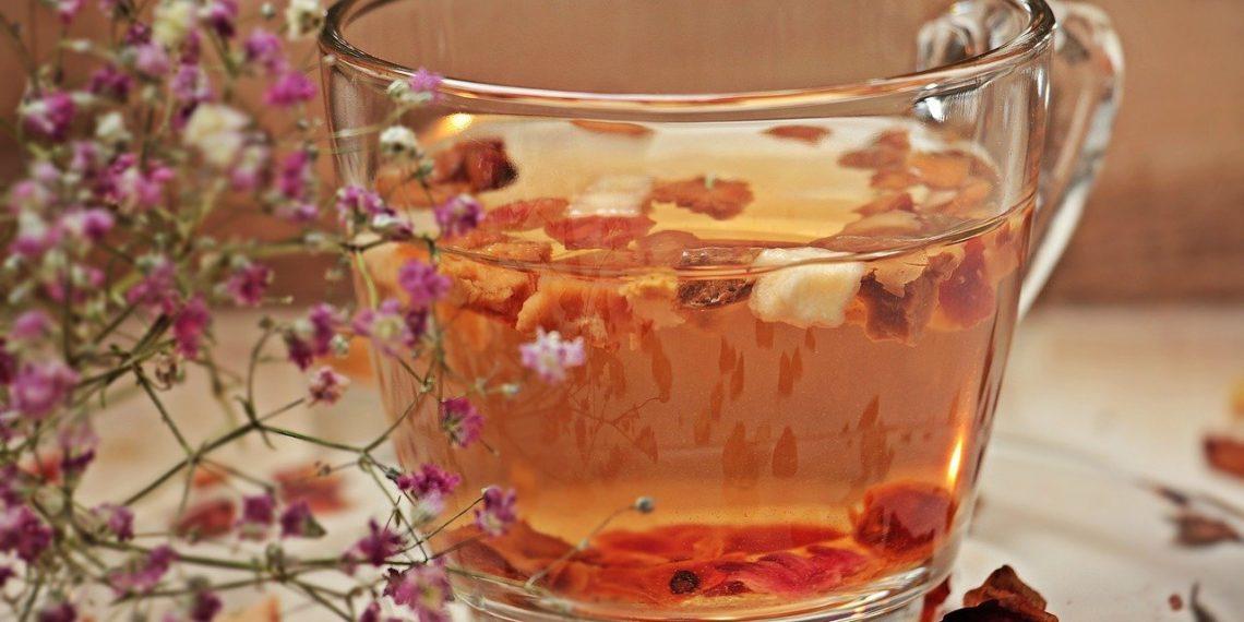 Conoce cómo hacer té de guayaba y sus beneficios