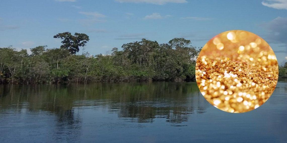 minería del oro en la amazonia de Venezuela