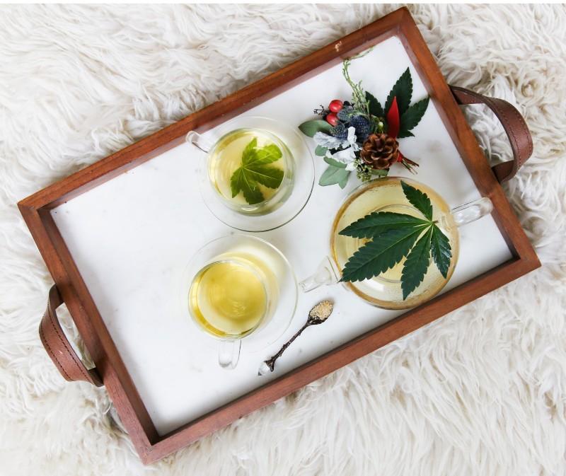 Argentina aprueba la importación de productos con cannabis para uso medicinal