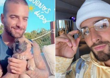 Duras críticas a Maluma por llamar a una perrita Lady Noriega