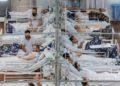 La OMS mostró su preocupación por la situación sanitaria del COVID-19 en Brasil. Foto: AP