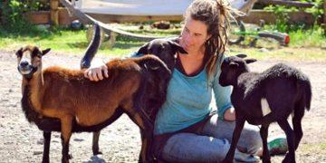 abrazar las ovejas de una granja para superar la soledad