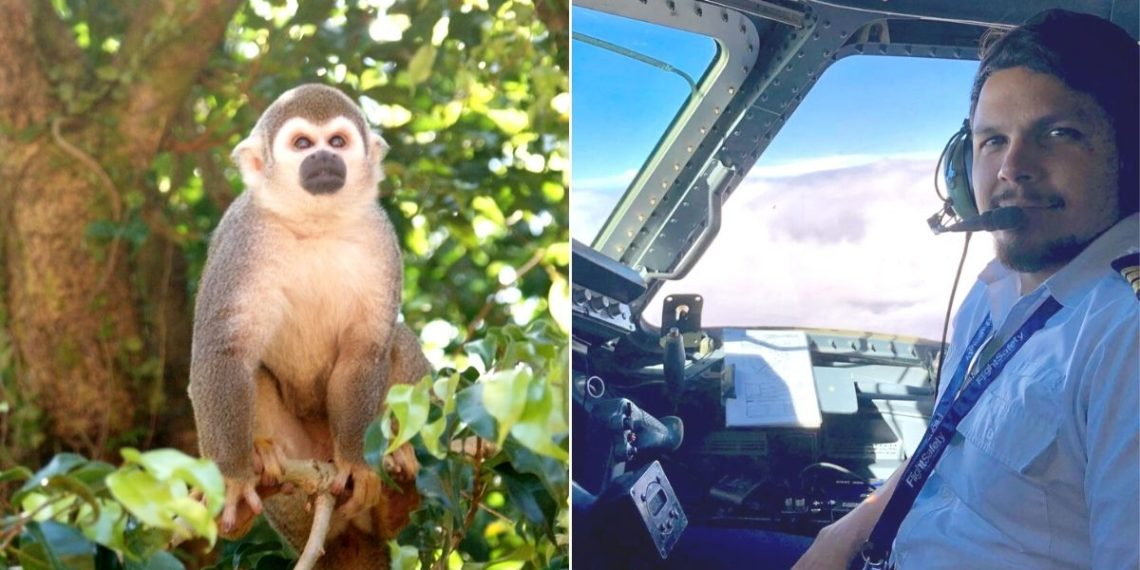 piloto sobrevivió a la selva del amazonas